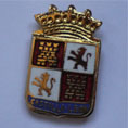 BADGE (CASTILLA Y LEÓN COAT)